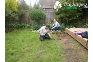 Gardeners in London at amazing fees